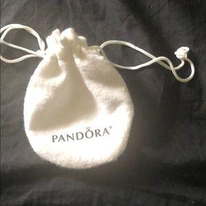 Pandora Jewelry - Brand new never worn pandora bracelet